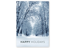 Snowy Winter Path Holiday Greeting Cards